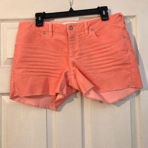 Carve Designs orange Oahu corduroy Shorts Size 8